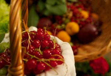 Mentine sanatetea consumand fructe